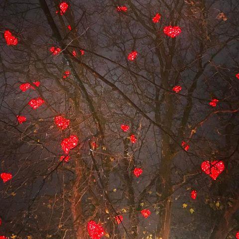 HjärtaniTräd